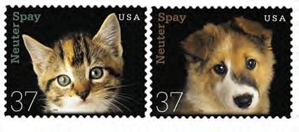 spay/neuter stamp
